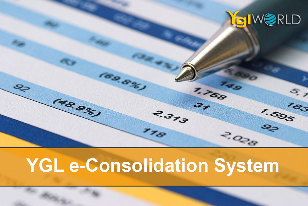 Looking for Consolidation Software?